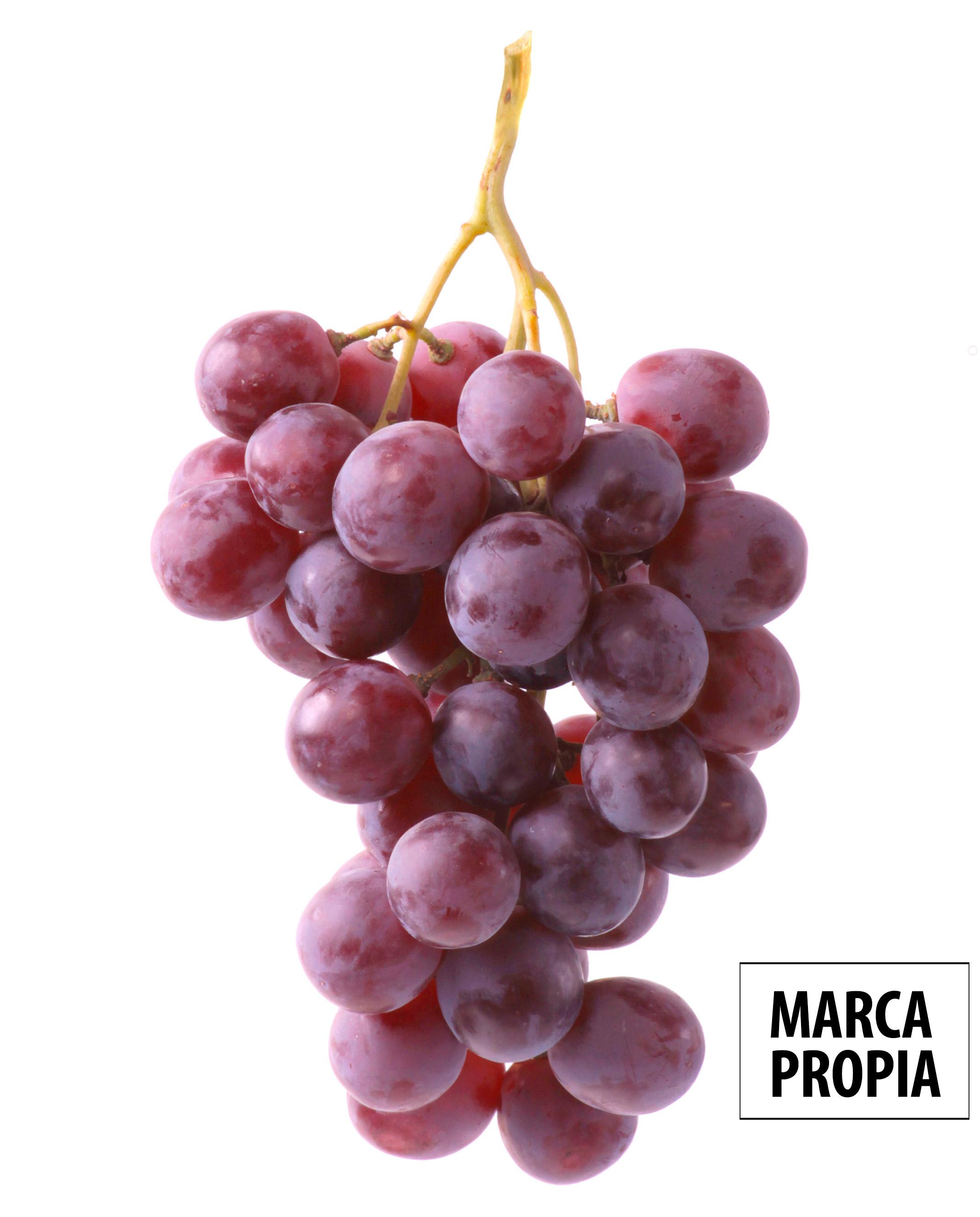 Frutas Nieves